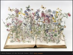 wild flowers of the british isles - su blackwell
