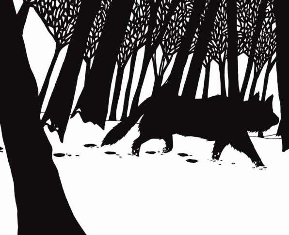 Loup noir casterman