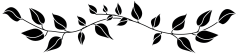 leaf_divider