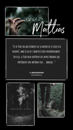 Mattias- brasaskoven - les mots d'arva